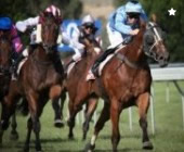 Bet On Horse Racing Online