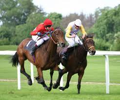 Horse Racing Sportsbooks