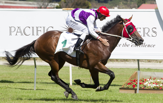 Bet On The 2013 New Zealand Derby