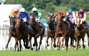 Imperial-Djay-determined-to-win-Bet365-Handicap-169000