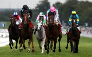 Labarinto-making-a-comeback-at-Newbury-through-the-Berry-Bros-Rudd-Magnum-Spring-Cup-Handicap-on-21st-April-147535
