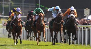 Hawkeyethenoo-might-miss-the-opportunity-to-defend-his-victory-in-the-Betfred-Victoria-Cup-152547
